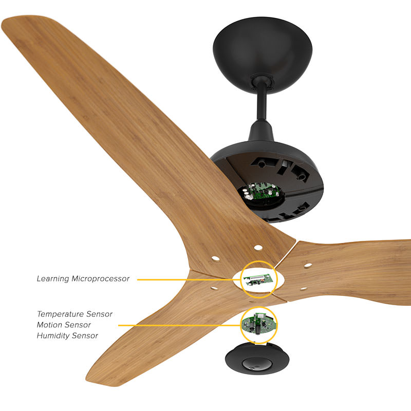Haiku big ass light Haiku The First Smart Ceiling Fan Ceiling Fans With Remotes And Lights